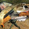 Сливнишка патица