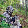 На лов в ловно стопанство ГОГОВО НИВИЩЕ - снимка Сани Дончева