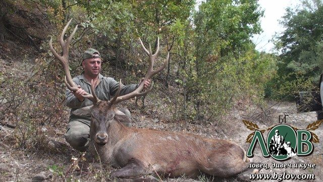 На лов за муфлон и благороден елен в Родопите