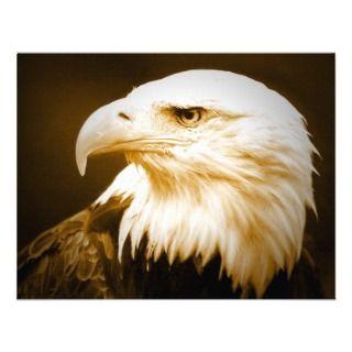 eagle eyeСнимка на